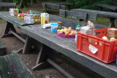 picknick-02